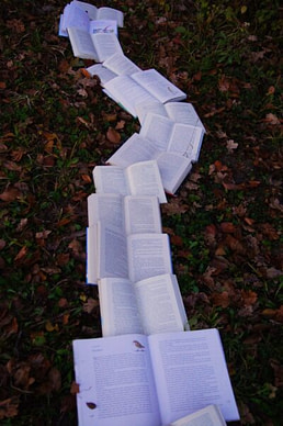 The Books in The Forest